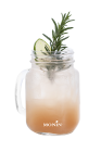 Lime Rosemary Fizz