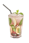 hibiscus raspberry  virgin mojito