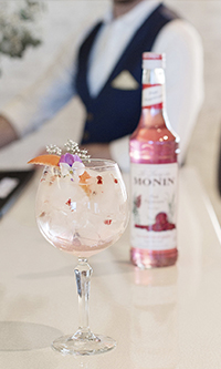 MONIN Products