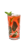 Mojito Amaretto Orange Sanguine