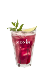rose mocktail