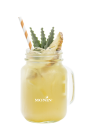 Iced Pineapple Green Tea