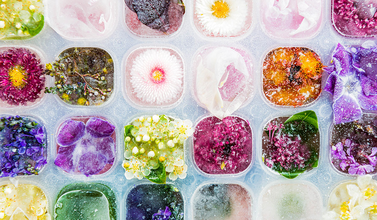 THE EDIBLE FLOWER TREND